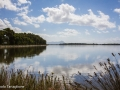 Lago di Fogliano: lungolago