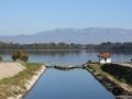 Lago di Fogliano: Foce Nuova